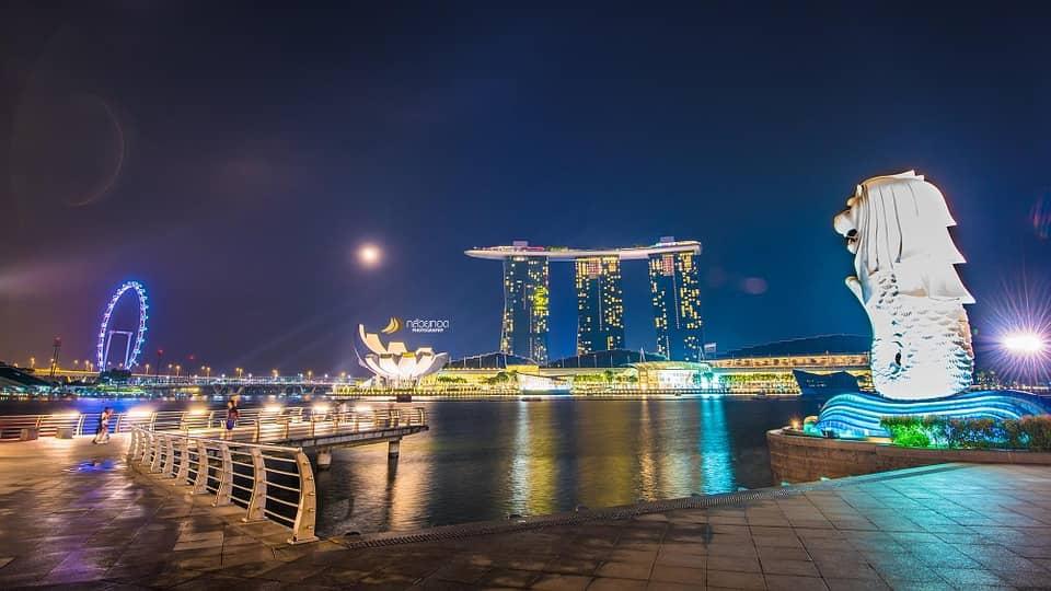 singapore-seo